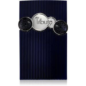 Afnan Tribute parfémovaná voda pro muže 100 ml