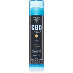Ignite CBD Mango 50mg balzám na rty 4,5 g