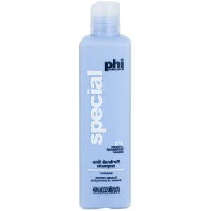 Subrina Professional PHI Special šampon proti lupům 250 ml